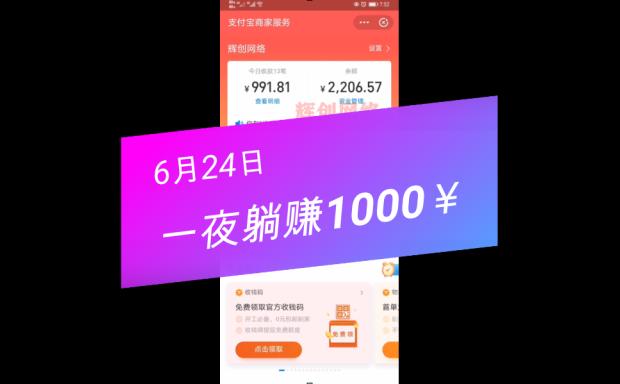 正规蓝海项目6月24日收入展示,一夜躺赚1000+