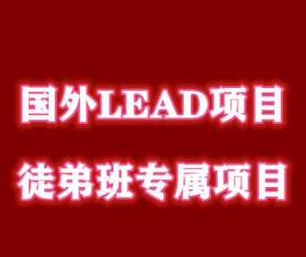 2020最新国外LEAD项目,入门到精通,月入5000+美金(持续更新)