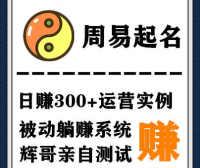 搭建起名网站日入300+(附源码+案例)100%可运营,对接码支付