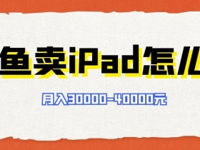 闲鱼上卖iPad,如何做到月入3万